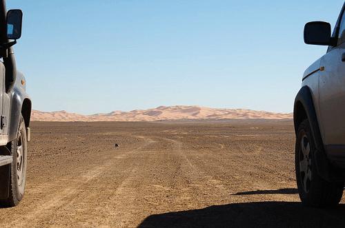 Parcourir le désert marocain en voiture de location feature